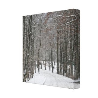 Winter Wonderland (Germany) Print wrappedcanvas