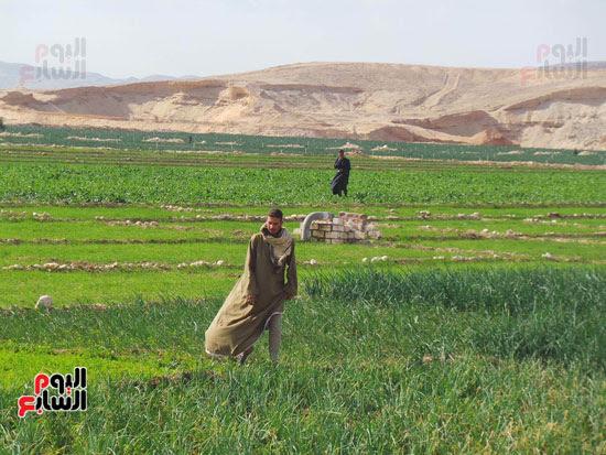 قرى فقيرة فى أسيوط (19)