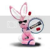 energizer bunny Pictures, Images and Photos