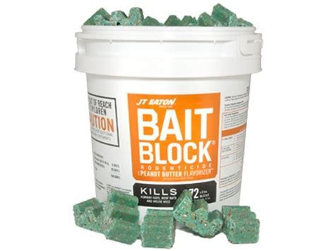 Best Rat and Mouse Bait Poison Reviews   Help You Spend Less