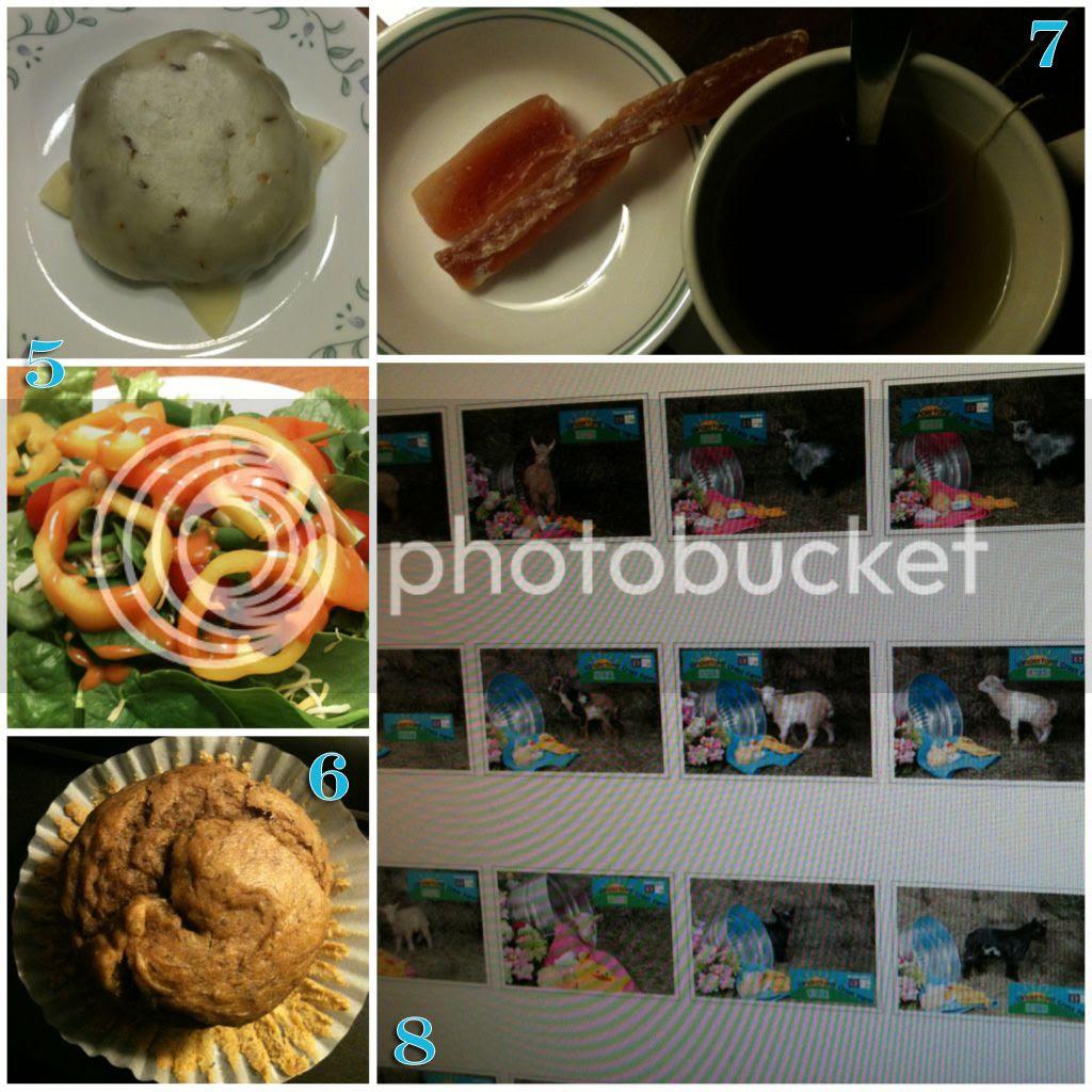 photo 1-20-13food2_zpsfe1c90b4.jpg