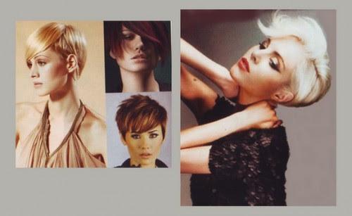 capelli,moda capelli 2011-2012, le nuove tendenze moda capelli 2011-2012,acconciature capelli,taglio capelli,
