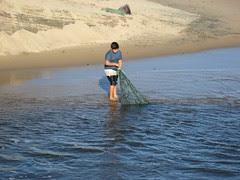 Laguna nets