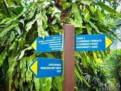 KL Bird Park 2011