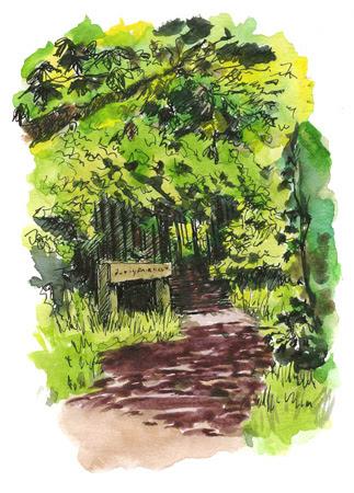 colouredwoodland