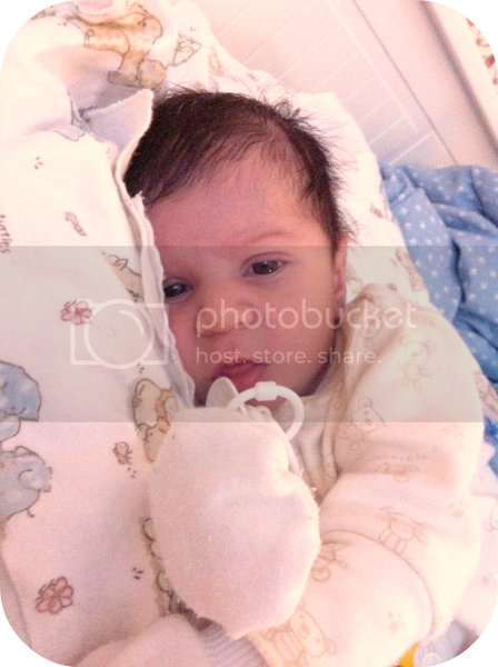 photo IMG_2721_zpsbbd62c16.png