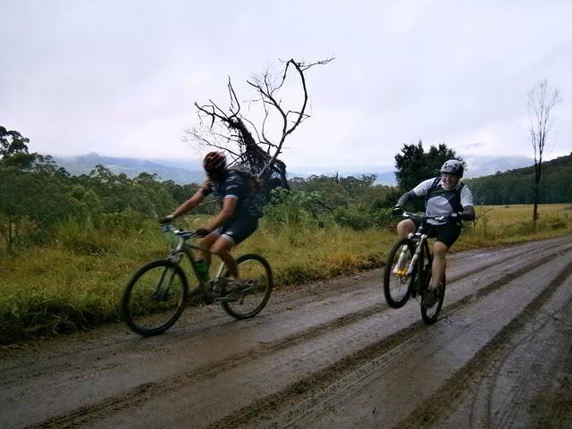 Tweed Range Road