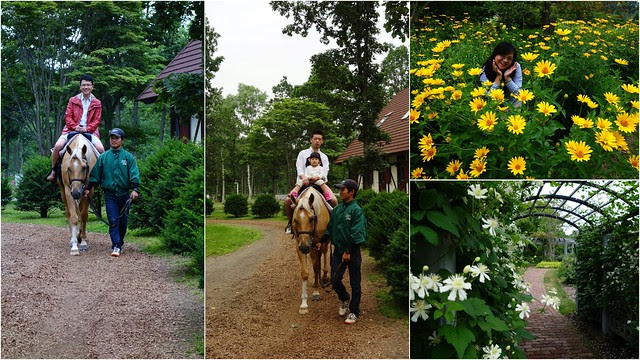北海道Northern Horse Park登別溫泉