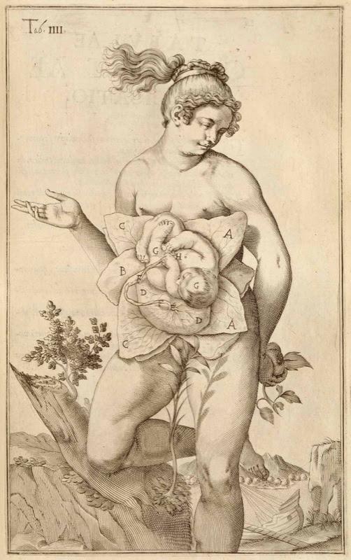 Giulio Casserio(ca. 1552-1616 )(anatomist) and Odoardo Fialetti (artist)