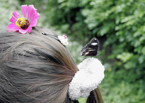 Butterfly landed on her head