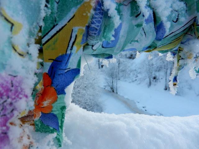 Winter_3_2012