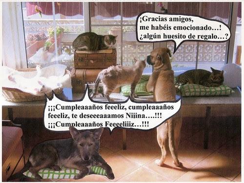 CUMPLEAÑOS DE NINA 3 001