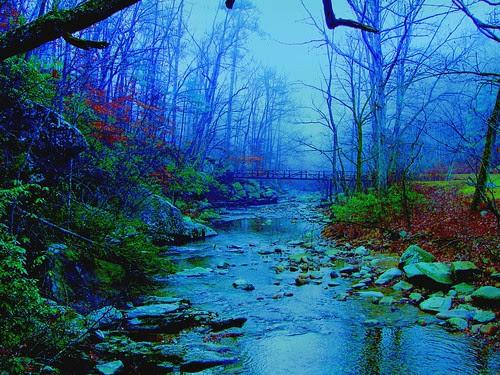 Misty Day on Otter Creek