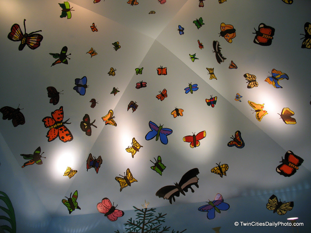 I made a visit to one of the community centers in Cottage Grove and made this butterfly discovery in the lobby. It certainly was a fun idea for the ceiling.