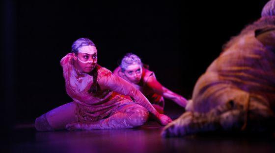 Danza aborigen en el Ayuntamiento de Sídney como parte de un evento para defender los derechos humanos de los aborígenes.