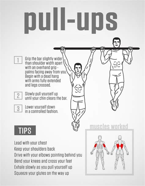 pull  workout guide    rise