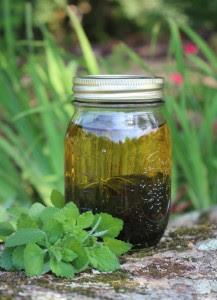 olejek melisowy