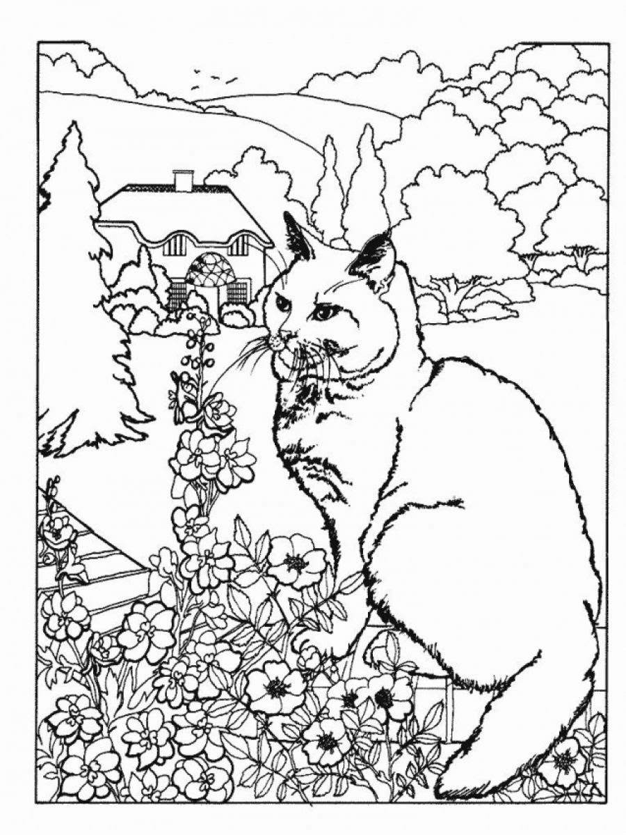 Download Adult Coloring Pages Pdf Free at GetDrawings | Free download