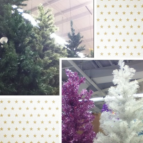 I spotted Christmas trees at the store last night! #excited