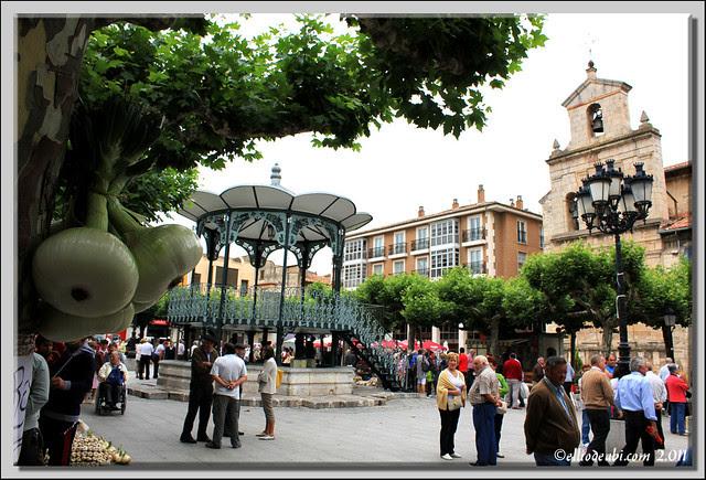 Día de Santiago 7
