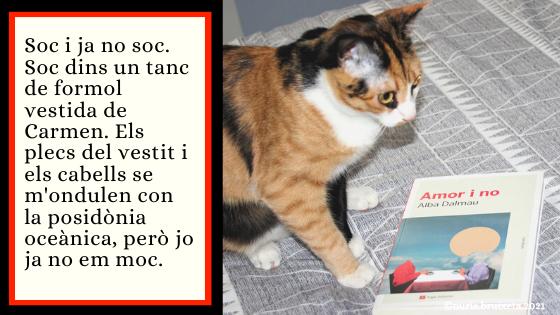 Amor i no. Alba Dalmau