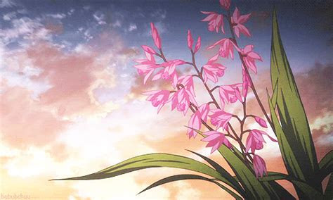 gif flowers anime flower gif tumblr gif sky flowers