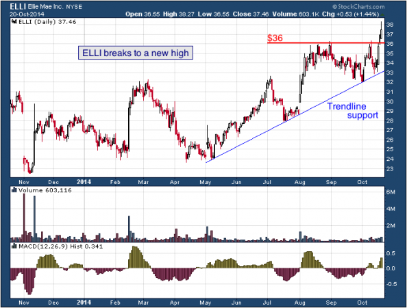 1-year chart of Ellie (NYSE: ELLI)