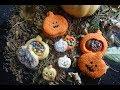 Recette De Cookies Halloween