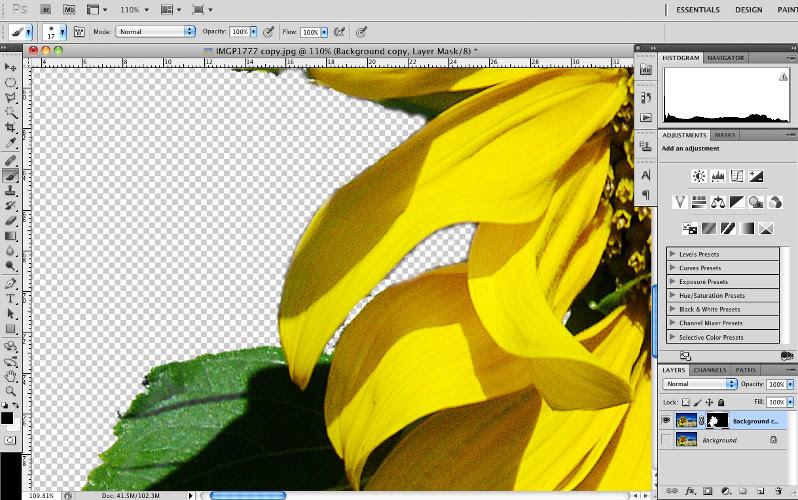 Giới thiệu về Mặt nạ lớp trong Photoshop