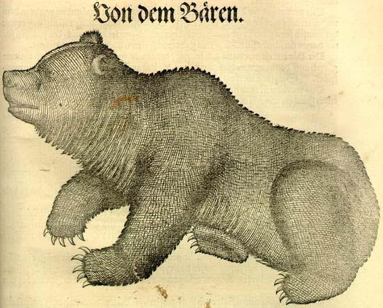 Conrad Gesner: Historia animalium. Medve