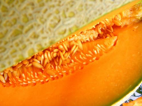 Melon de Montréal