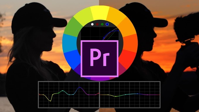 [100% Off UDEMY Coupon] - How To Color Grade & Make LUTs In Premiere Pro For Beginners