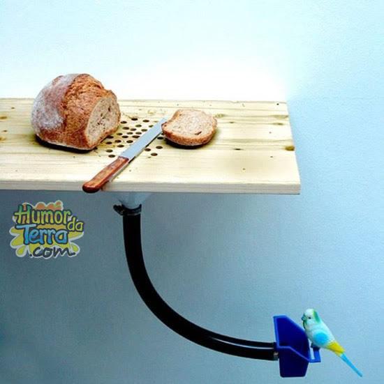 tábua-alimentadora-de-passaros