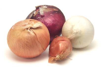 Click Here for onions
