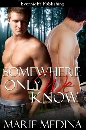 Genre: Alternative (MM) Contemporary Romance  Heat Level: 3  Word Count: 17, 160  ISBN: 978-1-77130-032-2  Editor: Karyn White  Cover Artist: Sour Cherry Designs