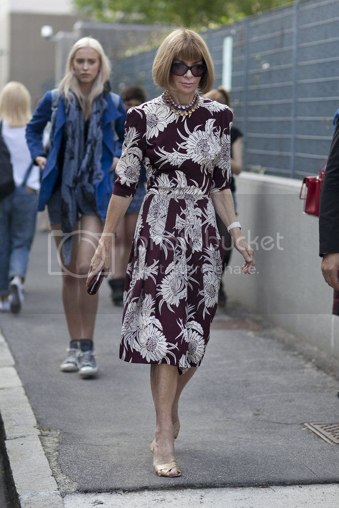 photo Anna-Wintour-forever-proves-power-bold-print_zps5d18e64c.jpg