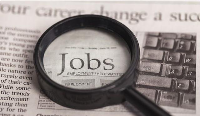 MSJE Recruitment 2021 : यंग ग्रैजुएट के लिए एमएसजेई में निकली भर्ती, एनआईआरएफ सूची में शामिल संस्थानों के युवा करें अप्लाई