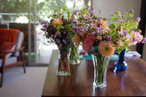 flowers, waiting