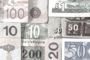 9 Best Forex Brokers in • Trade Forex Now • Benzinga