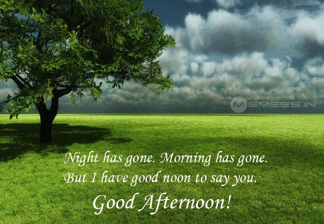 Afternoon Wishes Tamil Afternoon Wishes Download Memeesin
