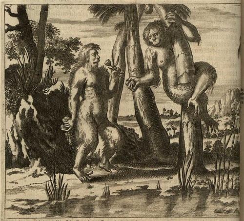 stylised orangutans