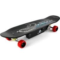 High Quality 800 Watt Dirt Rider Electric Skateboard