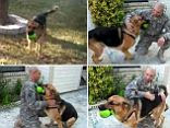 Heartwarming: Man and dog are reunited after a deployment in Afghanistan