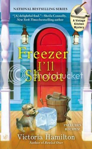 Freezer I'll Shoot photo n425661_zps46d1465d.jpg