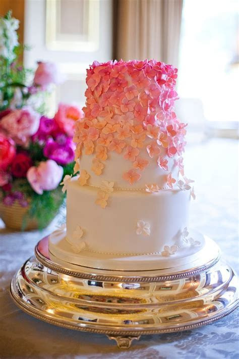 Best 25  Ombre cake ideas on Pinterest   Rose ombre cake