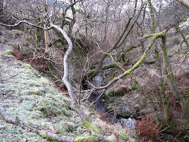 File:Arkleton Burn - geograph.org.uk - 636280.jpg