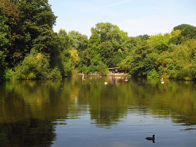 The Mixed Bathing Pond, Hampstead Heath