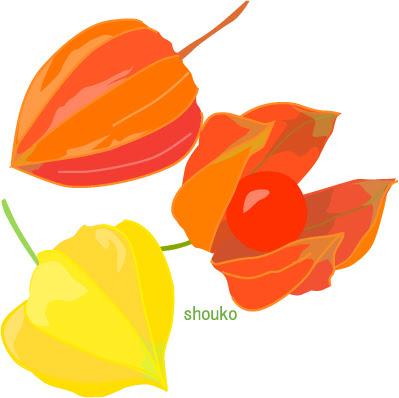 ほおずき夏まつり 無料イラスト フリー素材 Shoukoyamada イラストブログ