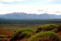 patagonia campo forestado benetton 1