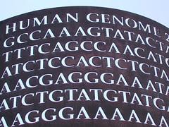 Human Genome by Dollar Bin